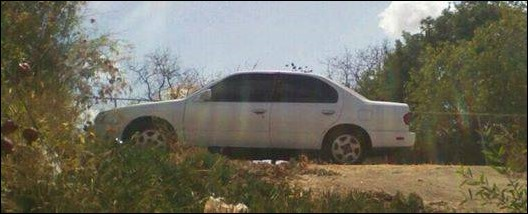 Why is this car hiding in the forest?